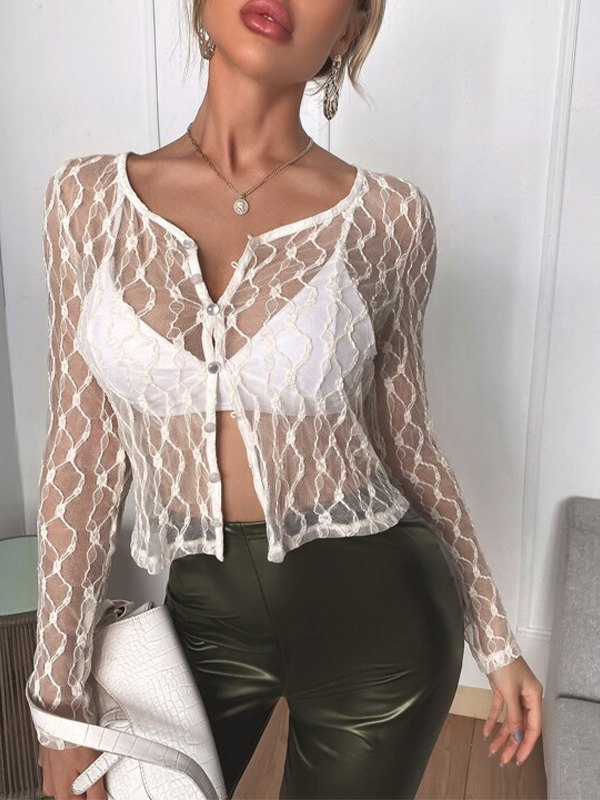 Sheer Lace Long Sleeve Crop Blouse -